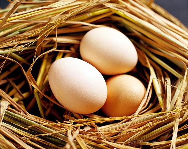 Trứng gà rất hữu ích trong việc làm trắng da