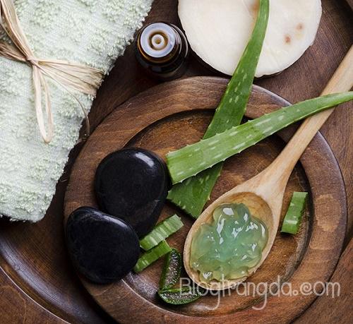 cách trị mụn trứng cá tận gốc từ tinh dầu tràm trà