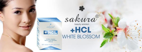Tìm hiểu về viên uống trắng da sakura hcl white blossom