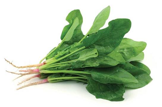 cách làm trắng da mặt đơn giản từ các loại rau có màu xanh